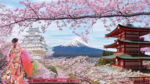 Du lịch Nhật Bản mùa hoa Anh Đào 6 ngày bay Vietnam Airlines từ Hà Nội giá tốt