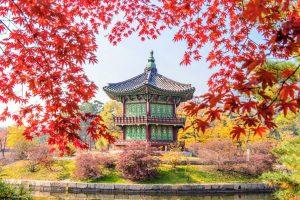 Du lịch Hàn Quốc mùa Thu – Seoul – Everland – Đảo Nami từ Hà Nội giá tốt